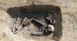 Pierwsze wyniki badań archeologicznych na obwodnicy Inowrocławia